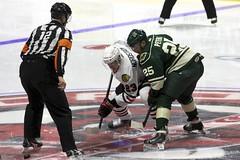 Opening Faceoff (the_mel) Tags: wild hockey ahl rockford metrocentre icehogs rockfordicehogs warrenpeters joakimnordstrom bmoharrisbankcenter iowawild