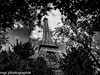Encerclée par les arbres/Surrounded by trees (m-g-c photographie) Tags: portrait blackandwhite bw sculpture white black paris france tower art monument nature statue architecture lady garden de landscape three photo iron europe noir tour noiretblanc outdoor famous ngc jardin eiffel nb latoureiffel mgc dame paysage arbre blanc symbole fer patrimoine dehors theeiffeltower exterieur theironlady célèbre ladamedefer extêrieur