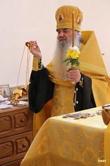 71. Престольный праздник в Адамовке