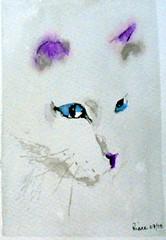 White cat, by Clia - DSC00328-001 (Dona Mincia) Tags: cute art face animal cat watercolor painting paper amigo friend arte blueeyes cara study fofo pintura rosto aquarela gracinha olhosazuis gatobranco