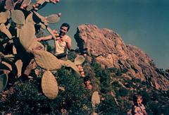 Στον Οκτώγκρεμο - At Oktogremos, 1968 (Νίκος Αλμπανόπουλος) Tags: ikaria pricklypears ικαρία φραγκόσυκα φραγκοσυκιά