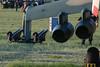 IMG_5211 (Aleksei Smoljanitski) Tags: kecskemet airshow 2010 repulonap