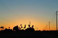 Buckeye Arizona (chrisjake1) Tags: buckeye arizona sunset road az palms