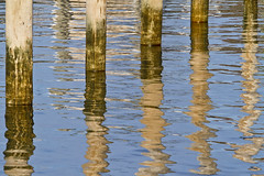 Piling Reflections (brucetopher) Tags: water sea ocean harbor reflection reflect dock pilings coast coastal seacoast winter offseason wood pole poles blue watery abstract shapes ripple smooth glassy surface shiny reflective