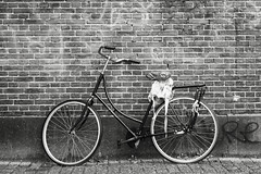 © Inge Hoogendoorn (ingehoogendoorn) Tags: bikes bike bikeparking bicycle bicycles blackandwhite blacknwhite dutchbikes dutchbike fietsen fiets