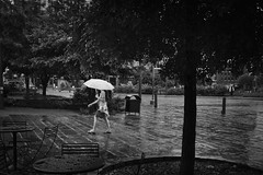 Rain at Main Plaza (Jesse Acosta) Tags: plaza trees wet rain sanantonio umbrella drops streetphotography jesseacosta