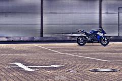 R1 rn12 (rs505) Tags: christmas light wallpaper bike race photo hp nikon foto hessen power sigma technik ps os cc r 1750 yamaha shooting titan tuning tamron michelin hdr pilot 1000 vr exhaust superbike motorad supersport langzeitbelichtung 70300 auspuff   supersportler  rn12 d5100 1
