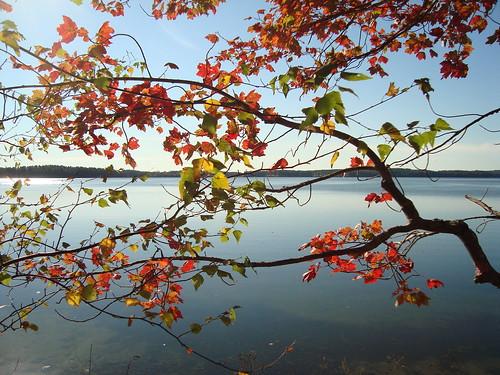 Lake Auburn Fall 2 - J Maloney