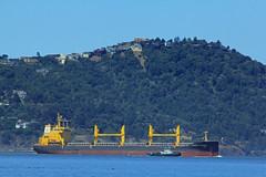 African Venture_003 (Walt Barnes) Tags: canon eos boat ship vessel cargo richmond calif freight freighter bulk bulkcarrier sanpablobay 60d canoneos60d eos60d africanventure wdbones99