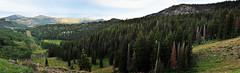 (kylesipple☬) Tags: trees nature forest landscape utah nikon saltlakecity slc f18 bigcottonwoodcanyon guardsmanspass nikond5000