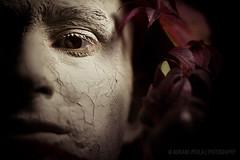 Autumn man (Adriano Perla) Tags: portrait selfportrait man face photoshop self canon eos 50mm retrato uomo autoritratto perla autunno ritratto adriano hombre rostro lightroom volto canon50mm18 argilla fotoritratto 60d occhichiusi pellesecca adrianoperla perlaadriano potd:country=it