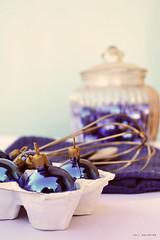 Por ac, ya se empieza a cocinar la navidad... (lolibalarino) Tags: christmas azul navidad merry