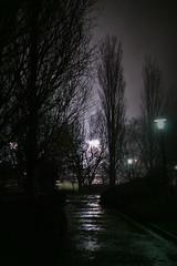26/365 (Lara Araújo.) Tags: rain night noche lluvia spain nikon galicia santiagodecompostela 26365 galeras 365days 365daysproject nikond3100 laraaraújo