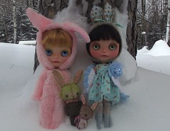 27/365 snow bunnies