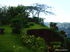 0281 Plantation Garden in Costa Rica (DRC - THANKS for 3.4 Million Views) Tags: gardens landscape costarica plantation