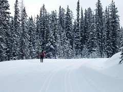Moraine Lake Road Cross Country Ski - Larry in a winter wonderland (benlarhome) Tags: winter sky mountain snow canada ice clouds montagne rockies track crosscountry alberta rockymountain banff lakelouise moraine gebirge morainelake crosscountryski trackset
