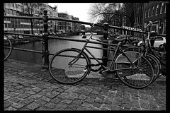 Leaning Bike (sophie9522) Tags: blackandwhite tree nature water monochrome amsterdam bike bicycle architecture river mono canal europe capital cycle manmade