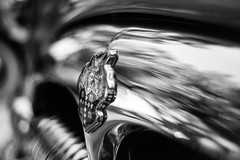 Crested (belleshaw) Tags: blackandwhite metal reflections classiccar crest grill chrome hoodornament carshow riversideca benedictcastleconcours