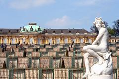 Schloss Sanssouci vineyard (ASRDK) Tags: berlin castle statue architecture vineyard slot schloss sanssouci potsdam eastberlin frederickthegreat rococostyle