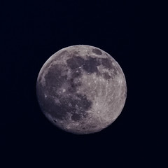 Last Full June Blue Moon (theeqwlzr) Tags: moon colorful nightlights fullmoon astrophotography nightsky southerncalifornia lunar bluebackground canonrebelxti