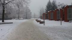 Winter view (AureliaJulianna) Tags: winter view poznan poznań snow snowcoveredstreetsandbuildings streets buildings