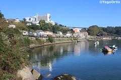 Bajo el sol de La Coruña (yagoortiz) Tags: tren renfe prima galicia xubias bonito barcos bonxe cerealero cereal