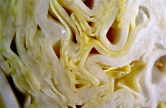 cabbage close up (valoisem) Tags: 365the2017edition 3652017 day52365 21feb17