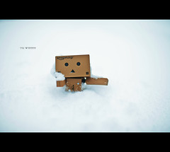 7/52 - WTF?!?! (Mark Somerville.) Tags: mark somerville burlington light brown photo 35l danbo snow storm canon 5dmkii lots