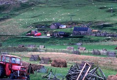 Fields + farms, Voe (1988) (Duncan+Gladys) Tags: uk scotland shetland voe