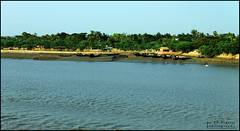 River Bank (soumen19xx) Tags: trees sky india color green water leaves yellow fauna digital photoshop canon river geotagged photography eos landscapes boat yahoo google stem focus asia branch natural photos outdoor bank ripples 1855mm t3 chlorophyl cs3 stillphotography 1100d