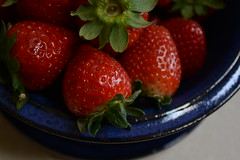 (ktLaurel) Tags: blue red food fruit rouge spring shiny strawberries bleu fraises