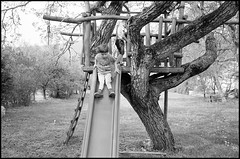 sliding from the treehouse (Istvan Penzes) Tags: family portrait bw white black children hungary lucas handheld manualfocus fujineopan400 kodaktmaxdeveloper leicamp aphog leicasummicron35mmasph penzes vrtestolna imaconflextight343