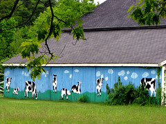 The Moo View (ParkerRiverKid) Tags: barn countryside mural cowmural happybarn ansh44