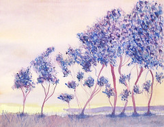 IMG_3372_cropped-purple-trees-288