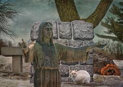 The Fallen Tree (jta1950) Tags: pet pets snow tree texture cemetery grave animal statue stone cat feline god tombstone gravestone jesuschrist