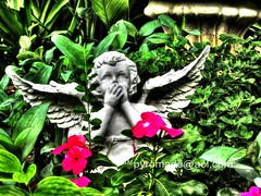 Cherub IMG_3255HDR (Micah S. White (fb.com/pyromade)) Tags: camera flowers summer favorite green statue angel digital canon wow outside photography interestingness interesting fantastic wings flickr texas photographer view purple shot sweet map good top awesome great july ps fave explore ten stunning cherub pointandshoot lm incredible judas hdr comments comment exif easttexas phenomenal 2013 lordmalikai pyromade sx230 pyromadeaolcom canonsx230hs