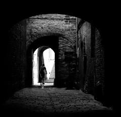 Towards the light (Robert Barone) Tags: italy italia tuscany toscana cretesenesi buonconvento provinciadisiena 1442mmkitlens olympusepl1