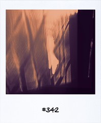"#DailyPolaroid of 27-8-13 #342 • <a style=""font-size:0.8em;"" href=""http://www.flickr.com/photos/47939785@N05/9632771849/"" target=""_blank"">View on Flickr</a>"