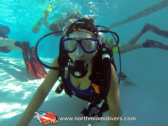 Learning to Scuba Dive-September 2013-345 (Squalo Divers) Tags: usa divers florida miami scuba diving learning padi squalo