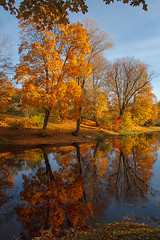 autumn (©Andrey) Tags: autumn lettonie birini