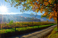 Cades Cove Morning (Bradley Nash Burgess) Tags: autumn sun mountain mountains fall nature outdoors nationalpark nc nikon raw tn tennessee northcarolina sunrays smokymountains cadescove sunflare lightroom greatsmokymountainsnationalpark gsmnp d7000 nikond7000