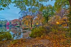 Autumn-D700-CZ-21-59th-2nd_0042 (JB Artful Photo) Tags: park nyc newyorkcity autumn newyork color fall colors beautiful pretty centralpark manhattan newyorknewyork nikond700 distagont2821 carlzeiss21mm