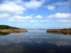 P1000581 (gzammarchi) Tags: lago italia nuvola natura paesaggio ravenna riflesso marinaromea piallassa camminata itinerario piallassabaiona