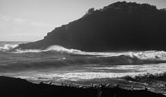Terns Point (Riff Renton) Tags: ocean sea holiday bird beach nature canon coast marine rocks surf waves surfer barrel wave australia surfing foam 5d surfers reef 5diii