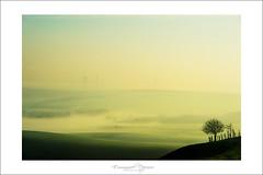 morning time (Emmanuel DEPARIS) Tags: france de photography nikon le pas brouillard emmanuel calais brume touquet boulognesurmer deparis
