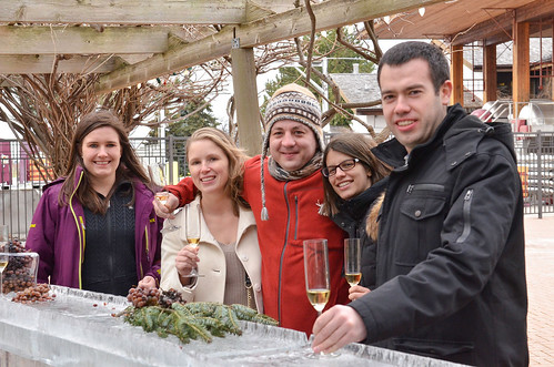 WINE COUNTRY ONTARIO - Early Icewine harvest in Wine Country