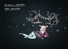 Merry Christmas (miri orenstein) Tags: