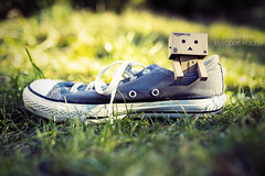 Danbo is wearing in his new Chucks (redEOS92) Tags: light green grass japan canon vintage amazon bokeh meadow converse chuck danbo