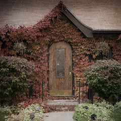Fall House (softclay) Tags: vintage fallcolors maine oldhouse olddoor