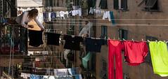 Equilibrium (_Massimo_) Tags: italy liguria genoa genova laundry clothesline bucato pannistesi panni massimostrazzeri ziomamo getty022814